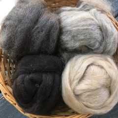 Phoenix Farm Fiber, Berryville, Virginia